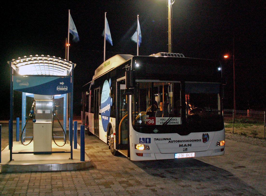 Tallinn — Testbuss MAN A21 Lion's City NL243 CNG