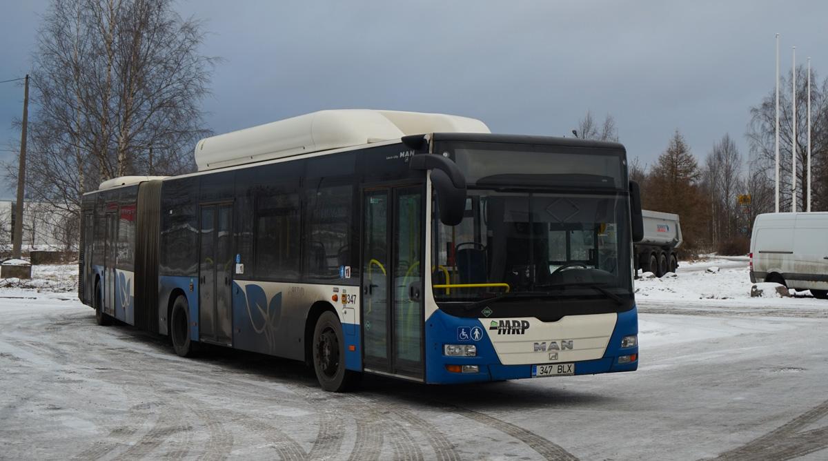 Tallinn, MAN A23 Lion's City G NG313 CNG № 347