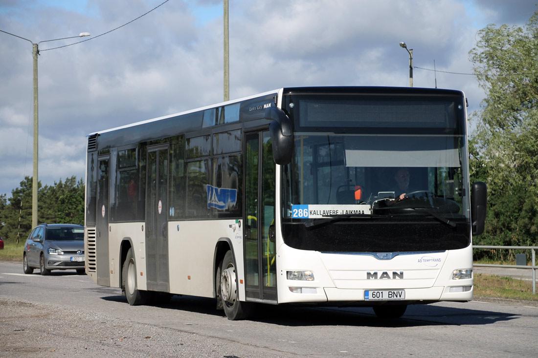 Maardu, MAN A78 Lion's City LE № 601 BNV