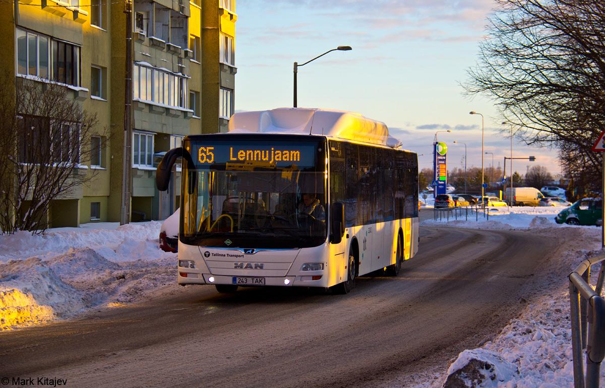 Tallinn, MAN A21 Lion's City NL313 CNG № 3243