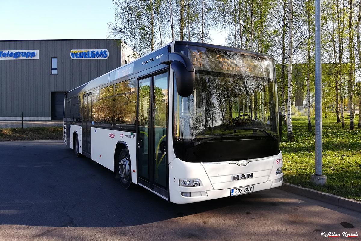 Tartu, MAN A78 Lion's City LE № 877