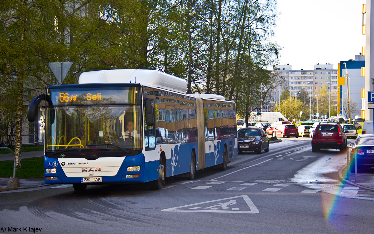 Tallinn, MAN A23 Lion's City G NG313 CNG № 3230