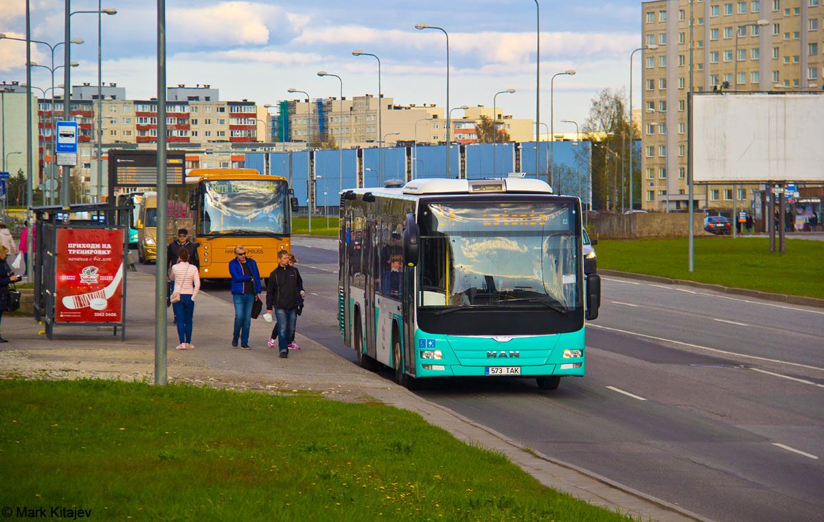Tallinn, MAN A78 Lion's City LE EL293 № 3573