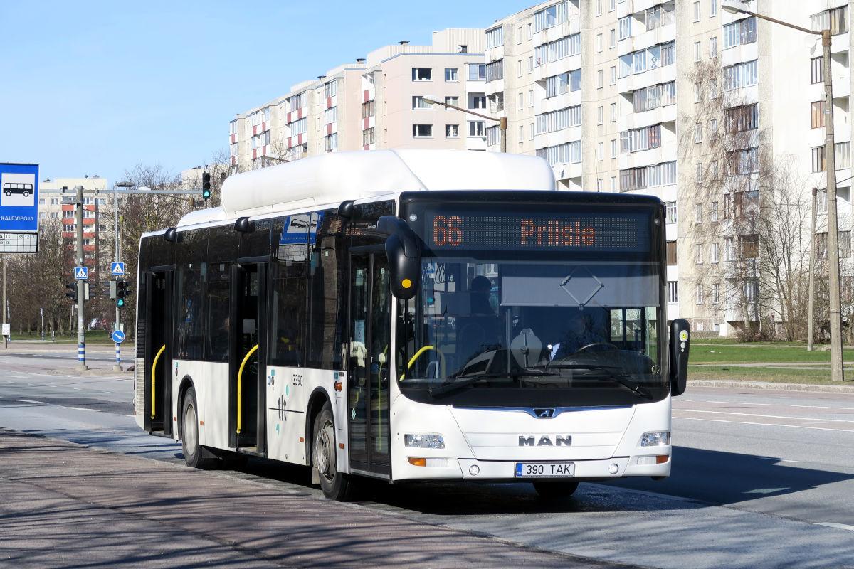 Tallinn, MAN A21 Lion's City NL313 CNG № 3390