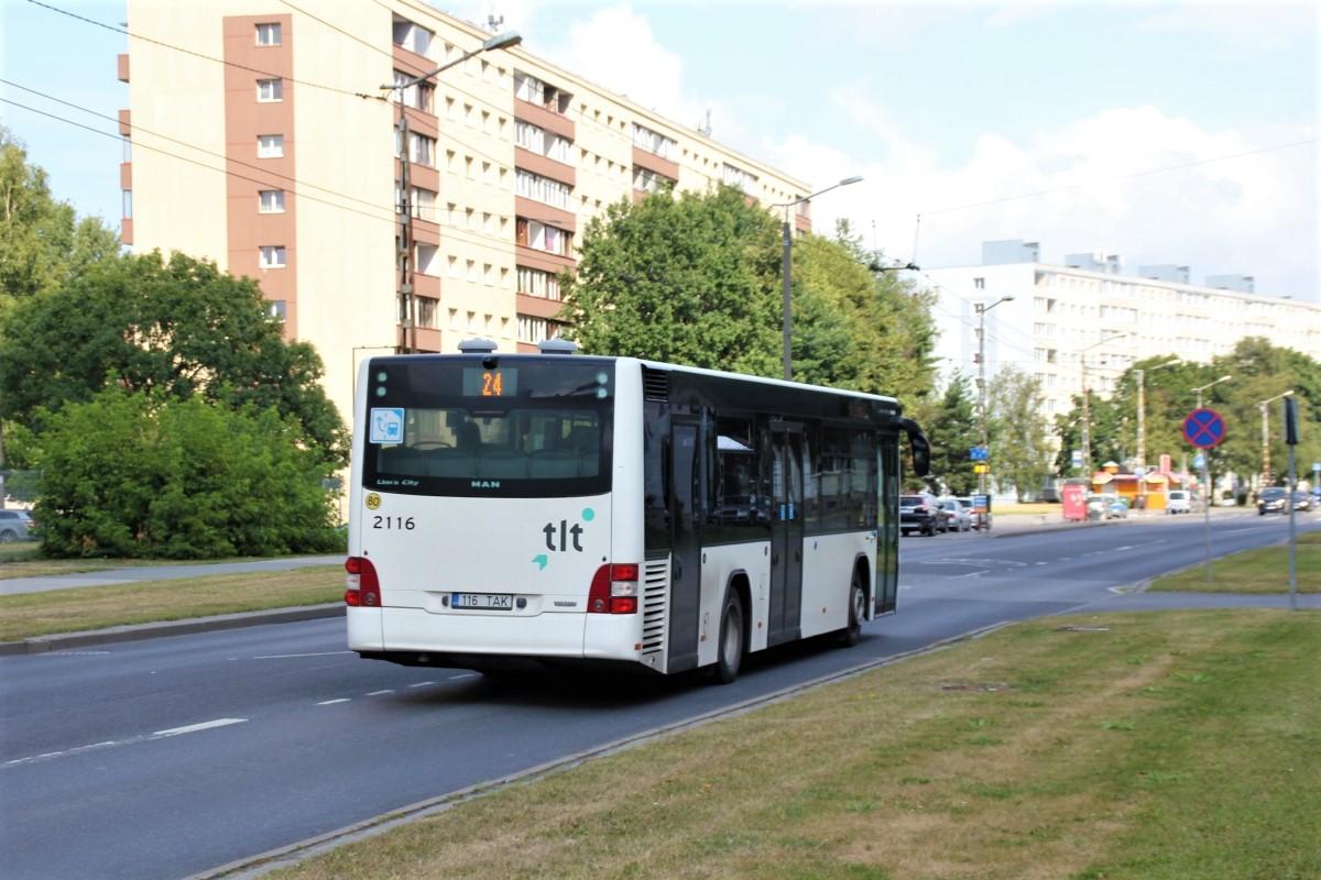 Tallinn, MAN A78 Lion's City LE EL293 № 2116