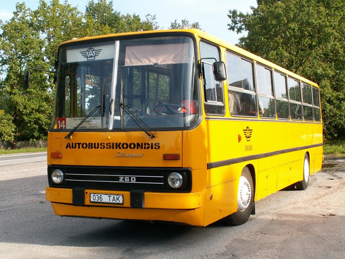 Tallinn, Ikarus 260.37 № 1036